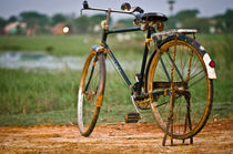 Bicycle among the fields by Srinivasan Ramakrishnan