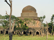 The fort ruins of history, mandu, india by AAYAM communication