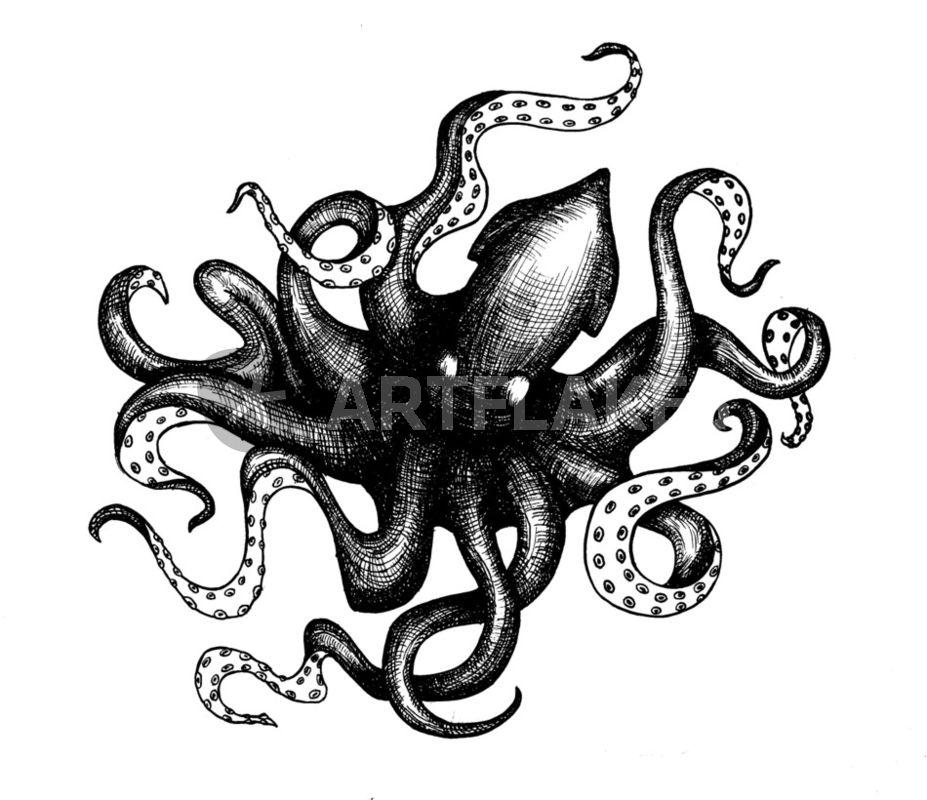 """Vintage Kraken Illustration """"The Kraken""""..."""