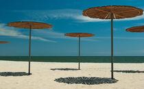 Beach by Victoria Savostianova