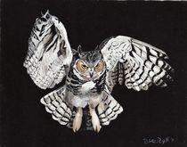 Screech Owl by Brandy House