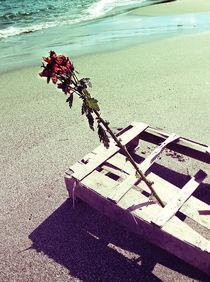 shipwrecked by cyansea