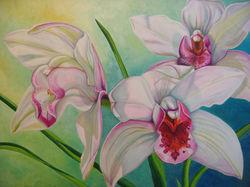 Orchids1200