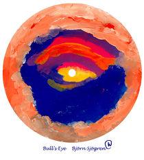 BULL'S EYE von Bjorn  Sjogren