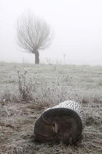 Kopfweiden bei Frost und Nebel 26 von Karina Baumgart