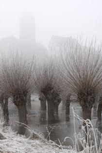 Kopfweiden bei Frost und Nebel 02 von Karina Baumgart