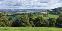 Quantock Hills Panorama, Somerset, England by Craig Joiner
