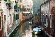 'Venice' by Victoria Savostianova