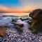 Coral-dawn
