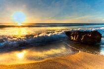 Golden Morning by Debra and Dave Vanderlaan