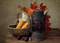 Herbstliches Stillleben von Nailia Schwarz