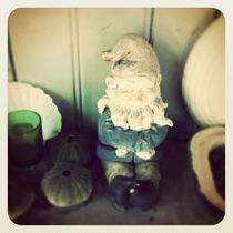 Garden gnome by Jinnie Davel