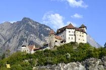 Schloss Gutenberg 5 von Vlado  Franjevic