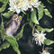 Owl-and-night-cereus-for-artflakes