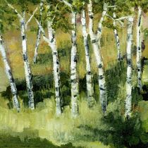 Birch Trees on a Hillside by Michelle Calkins