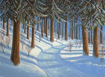 Tahoe-forest-in-winter