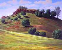 Flowering Meadow von Frank Wilson