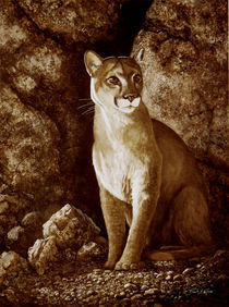 Cougar Wait Until Dark by Frank Wilson