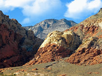 Calico Basin Nevada by Frank Wilson