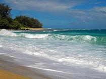 Foamy Surf von Frank Wilson