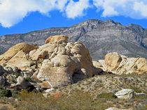 Desert Hikers von Frank Wilson