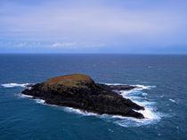 The Island  by Frank Wilson