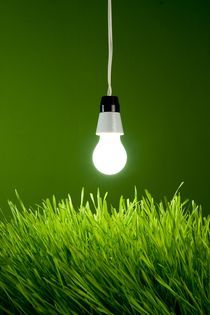 Spring light bulb - Environment Concept von Peter Zvonar