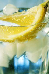 2008-03-22-voda-citron04