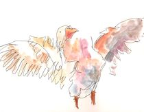 Goose by Alexandra Kovacs