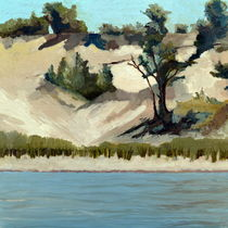 Lake Michigan Dune with Trees and Beach Grass von Michelle Calkins