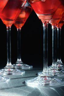 2008-10-29-martini05