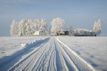 Land(wirt)schaft im Winter von Michael S. Schwarzer
