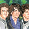 The-jonas-brothers-09