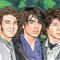 The-jonas-brothers-09