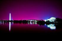 Washington-purple-ii