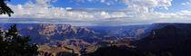 The Grand Canyon Arizona by Ken Howard