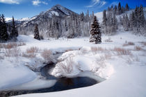 Winter in the Wasatch Mountains von Douglas Pulsipher