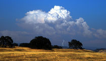 Billowing Thunderhead von Frank Wilson