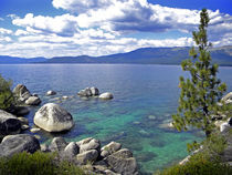 Deep Waters Lake Tahoe  von Frank Wilson