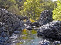 Giant Basalt Boulders  by Frank Wilson