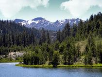 August Snows in the Sierras von Frank Wilson