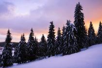 Schneeleuchten by moqui