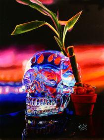 Crystal Skull by Todo Brennan