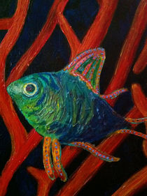 fish by Susanne Freitag