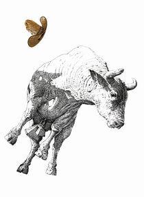 Thats-a-lot-of-bull