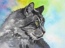 Intent Tabby  by lynne-hurd-bryant