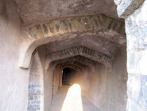 The ruins of history, mandu, india von AAYAM communication