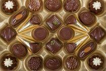 2009-01-23-chocolate10