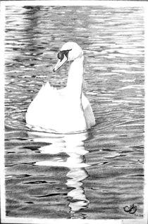 White swan in the water von Muna Abdurrahman