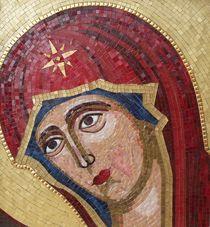 The Virgen by Liza Wheeler